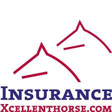 Xcellent Horse Insurance